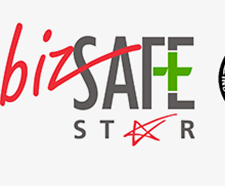 Bizsafe Star Small